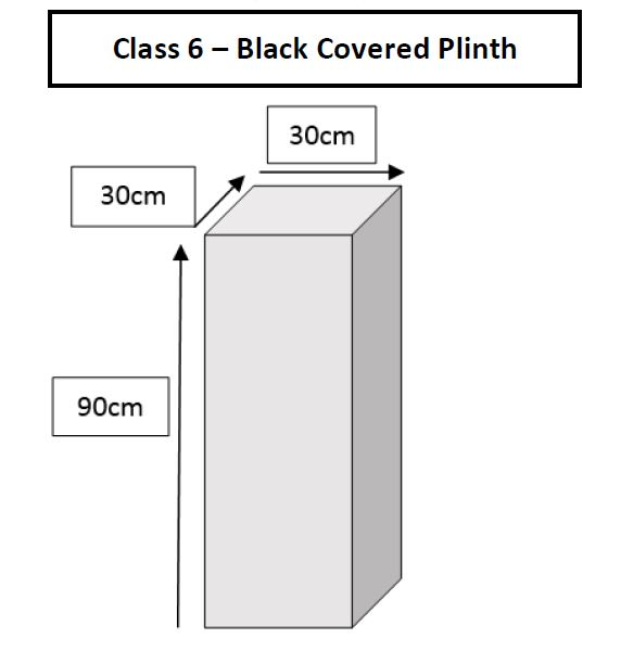 12.class-6-black-covered-plinth